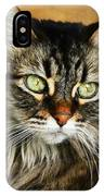 Maine Coon In Topaz IPhone Case