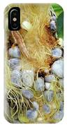 Maize Cob Infected With Corn Smut IPhone Case