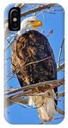 Majestic Bald Eagle IPhone X Case