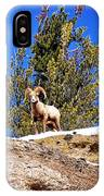 Majestic Big Horn Sheep IPhone Case