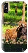 Majestic Bison IPhone Case