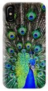 Majestic Blue IPhone Case