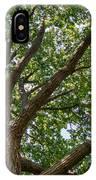 Majestic Oak IPhone Case