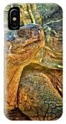 Majestic Tortoise IPhone Case