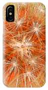 Make A Wish In Orange IPhone Case