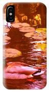 Malard Duck On Pond 3 IPhone Case