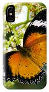 Malay Lacewing Butterfly  IPhone Case