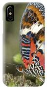 Malay Lacewing IPhone Case