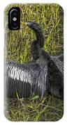 Male Adult Anhinga IPhone Case