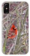 Male Cardinal Cold Day 2 IPhone Case