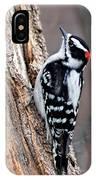 Male Downy Woodpecker IPhone Case