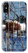 Male Northern Shoveler Lacassine Nwr IPhone Case