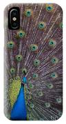 Male Peacock   #9053 IPhone Case
