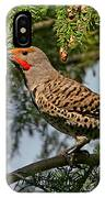 Male Red-shafted Northern Flicker IPhone Case