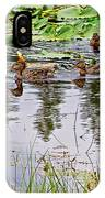 Mallard Ducks In Heron Pond In Grand Teton National Park-wyoming  IPhone Case