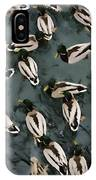 Mallard Ducks On A Pond IPhone Case