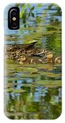Mallard Mom And The Kids IPhone Case