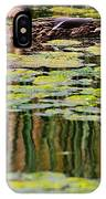 Mallard Pond IPhone Case