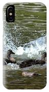 Mallard Water Party 2 IPhone Case