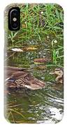 Mama Duck And Baby IPhone Case