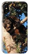 Mama's In The Tree IPhone Case