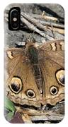 Mangrove Buckeye  IPhone Case