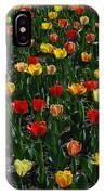 Many Tulips IPhone Case