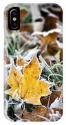 Maple Frost Leaf Art IPhone Case