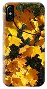 Maple Gold IPhone Case