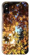 Maple In Fall IPhone Case
