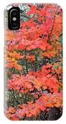 Maple Rush In The Fall IPhone Case