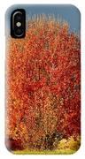 Maple Tree IPhone Case