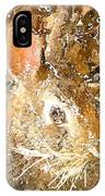 March 025 0 Rabbit Eyes Looking IPhone Case