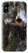 Marco Eagle - Protecting Its Nest IPhone Case