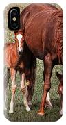 Mare With Foal IPhone Case