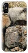 Marmot 1 IPhone Case