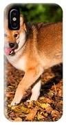 Marvel 1. Shiba Inu Breed IPhone Case