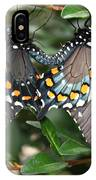 Mating Swallowtails IPhone Case