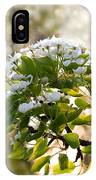 May Pear Blossoms IPhone Case