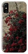 Mdina IPhone Case