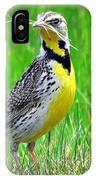 Meadowlark IPhone Case
