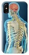 Medical Illustration Of Human Brain IPhone Case