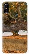 Medusa Oak IPhone Case