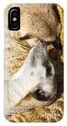Meerkat Group Resting IPhone Case