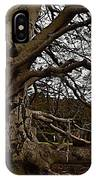 Meet Me At The Tree IPhone Case