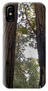 Meeting Of The Sequoias IPhone Case