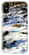 Melting Snow In A Forest In Late Winter IPhone Case