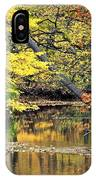 Metropark Picnic IPhone Case