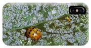 Mexican Bean Beetle IPhone Case