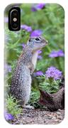 Mexican Ground Squirrel In Wildflowers IPhone Case